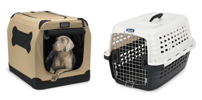 must have dog travel accessories