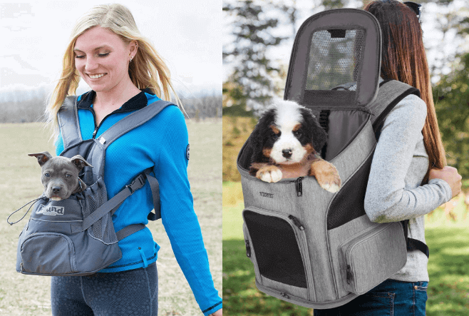 travel accessories for dogs in the car