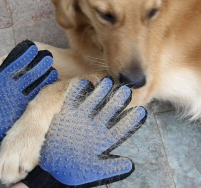 dog hair remover glove